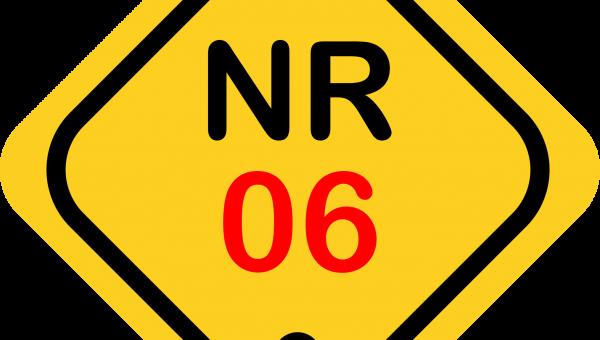 NR 06 (2022)
