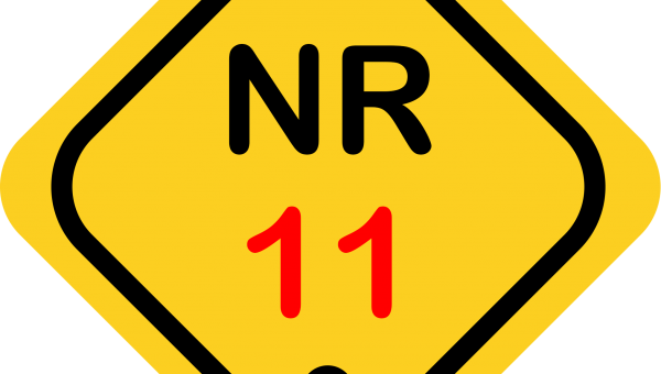 NR 11 (2022)