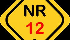 NR 12 (2022)