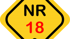 NR 18 (2022)